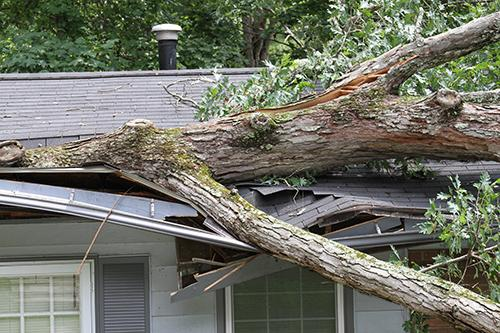 Storm Damage Dallas